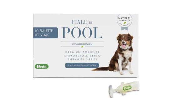 Εικόνα της Natural Derma Pet Φυτικές Αμπούλες Σκύλου Άνω Των 20kg