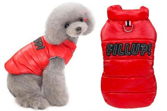 Εικόνα της Μπουφάν Σκύλου Fill Up Κόκκινο